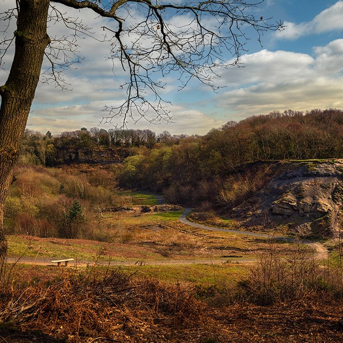 Saltwells Local Nature Reserve is situated in the Netherton area of Dudley Metropolitan Borough in West Midlands, England.